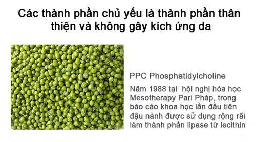 vien-tam-trang-da-cnkcos-color-bean-1