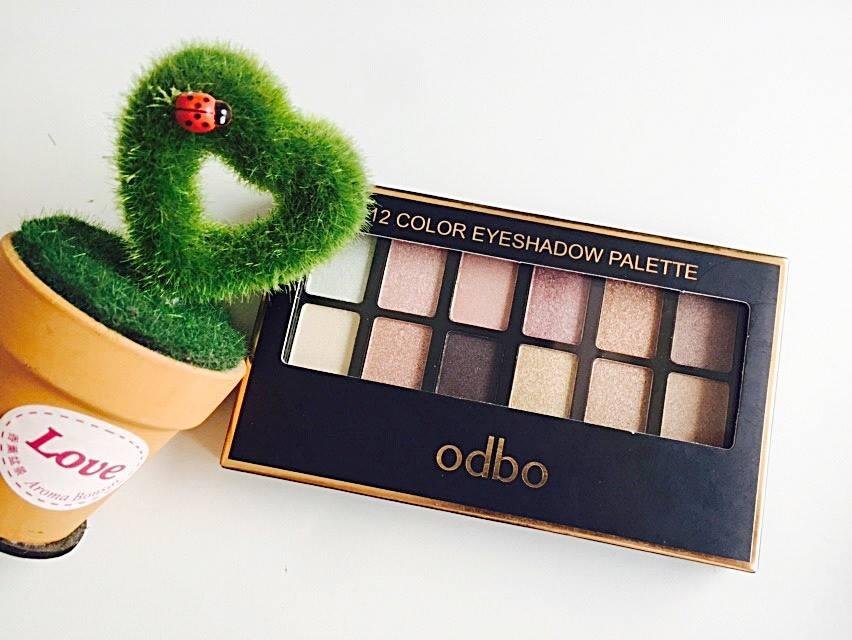 phan-mat-12-color-eyeshadow-palette-odbo-od227-cua-hang-nao-1
